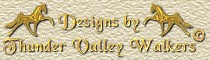 Websites and Equine Designs by Thunder Valley Walkers